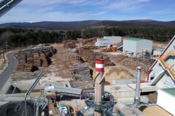 Asesoría técnica en la financiación de una planta de producción eléctrica a partir de biomasa forestal